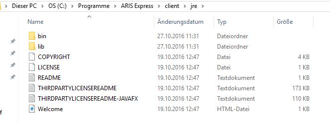 error while starting ARIS Express: